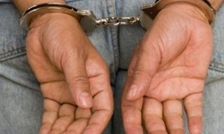 دستگیری سارقان احشام در سرخس