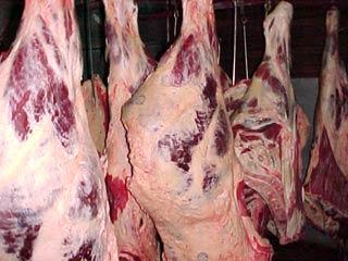 توزیع ۱۵۰ کیلوگرم گوشت گرم میان مددجویان سرخسی