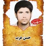 شهید حسن عرب