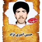 شهيد حسين اميري نژاد
