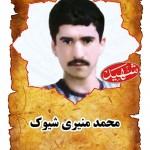 شهيد محمد منيري