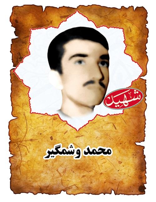 شهید میرزا محمد وشمگیر
