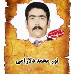 شهید نورمحمد دلارامي