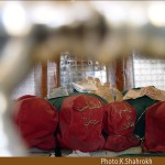عکس/ جایي كه سرهاي مبارك شهداي كربلا را نگه داشتند