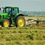 رشد 37 درصدی برداشت یونجه از مزارع شرکت کشت و صنعت سرخس