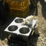 متخلفان عرضه مرغ زنده در سرخس به شش ماه حبس محکوم شدند