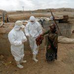 طرح ملی واکسیناسیون طیور روستایی در سرخس اجرا میشود