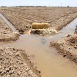 پروانههای بهرهبرداری آب چاهها از روی عدالت نیست/ بحران ساختگی آب کشاورز سرخسی را حاشیهنشین شهرها میکند/ در سرخس بحران آب نداریم/ تعیین خسارت حق آبه کشاورزان عادلانه نیست/ نمیتوان یکشبه مردم را از نان خوردن انداخت