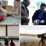 کریدور پرندگان مهاجر در برابر آنفولانزا امن است/ ورود غیرمجاز مرغ زنده به شهرستان جریان دارد!/ پایش و مراقبت روزانه فعال و غیرفعال آنفلوانزای فوق حاد پرندگان در سرخس