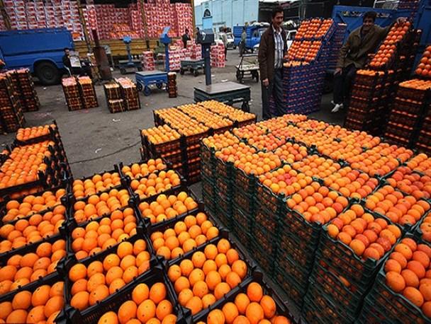 عرضه ۴۰ تن میوه شب عید در سرخس/ ۲۲ میوهفروش اعلام آمادگی کردند
