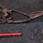 چهره مردی که 700 سال پيش زندگی می کرد+تصاویر