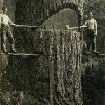 تصویری جالب از دو تبر زن در سال ۱۹۱۵