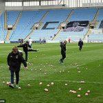حمله خوک ها به یک مسابقه فوتبال! +تصاویر