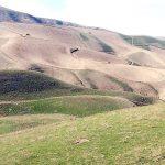 لزوم احیای 200 هزار هكتار از مراتع سرخس/ خطر ریزگردها شهرستان سرخس را تهدید میکند!
