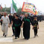 تصاویر اختصاصی از پیادهروی اربعین حسینی (۲۷)