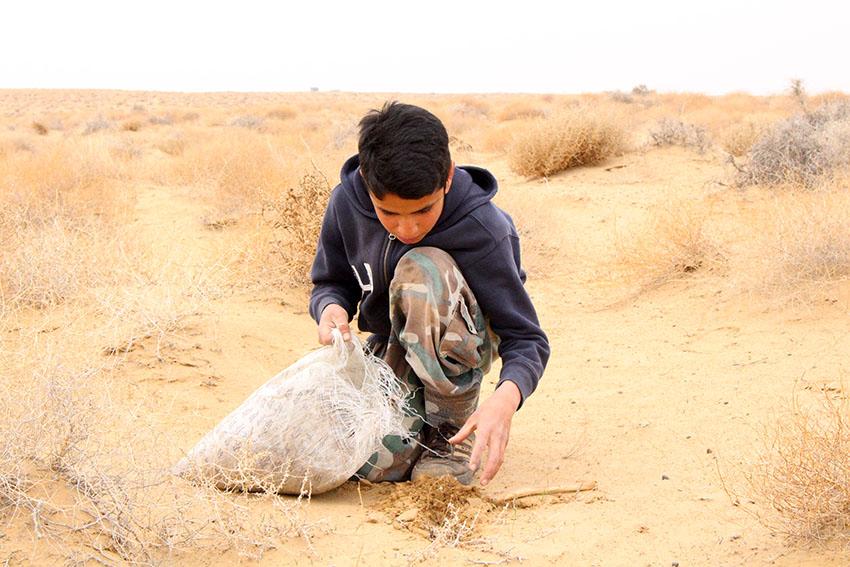 ۱۰۰۰ هکتار از اراضی سرخس «کپه کاری» میشود/ فرمانده سپاه سرخس: همکاری با منابع طبیعی برای مقابله با ریزگردها ادامه دارد