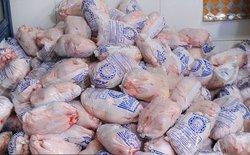 توزیع مرغ دولتی ۸۹۰۰ تومانی ادامه دارد