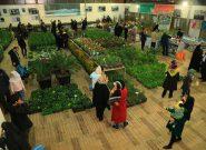 هفتمین نمایشگاه گل و گیاه در سرخس برپا شد