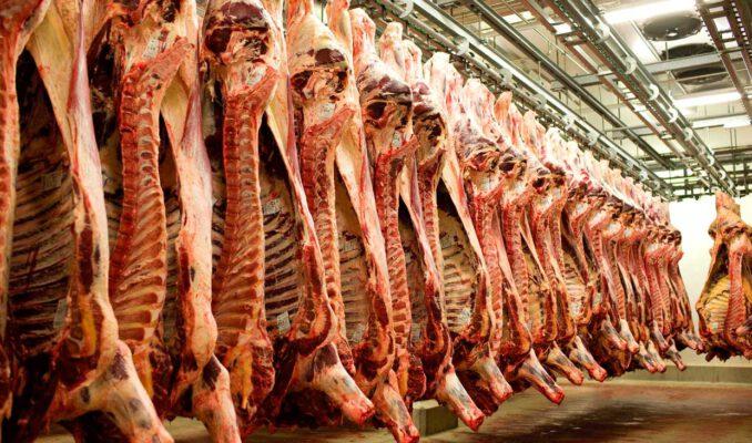 توزیع گوشت گرم در ۱۲ نقطه محروم سرخس