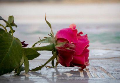 گلباران گلزار شهدای سرخس