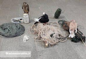 صیاد غیرمجاز پرندگان کمیاب در سرخس دستگیر شد