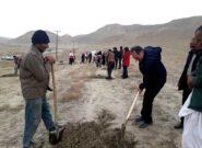 سرخس در نهضت ملی کاشت ۱۴ میلیون اصله نهال پیشگام شد