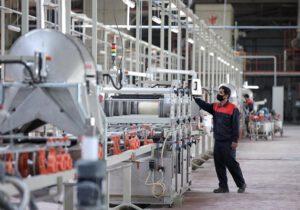 ۴۰ درصد واحدهای تولیدی سرخس غیر فعال است