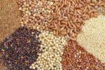 جهاد کشاورزی؛ مشکلی برای تامین نهاده دامی دامداران سرخس نداریم